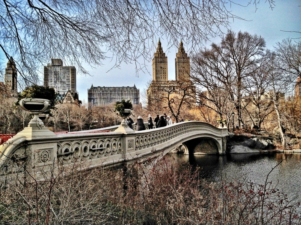nyc-central-park-bridge-mike-beauchamp
